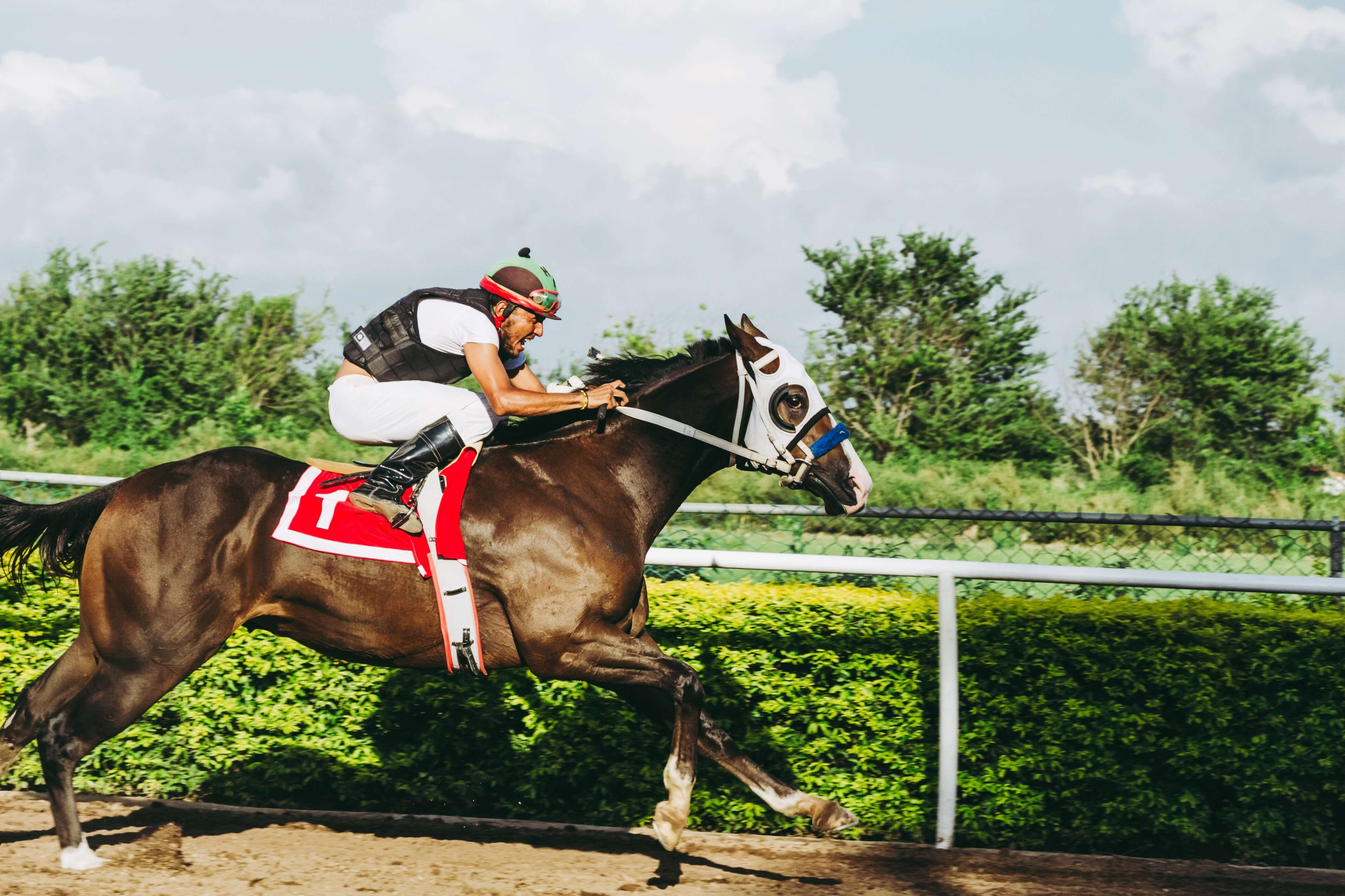 NV Horse Racing Betting - Bet on Horses in Nevada